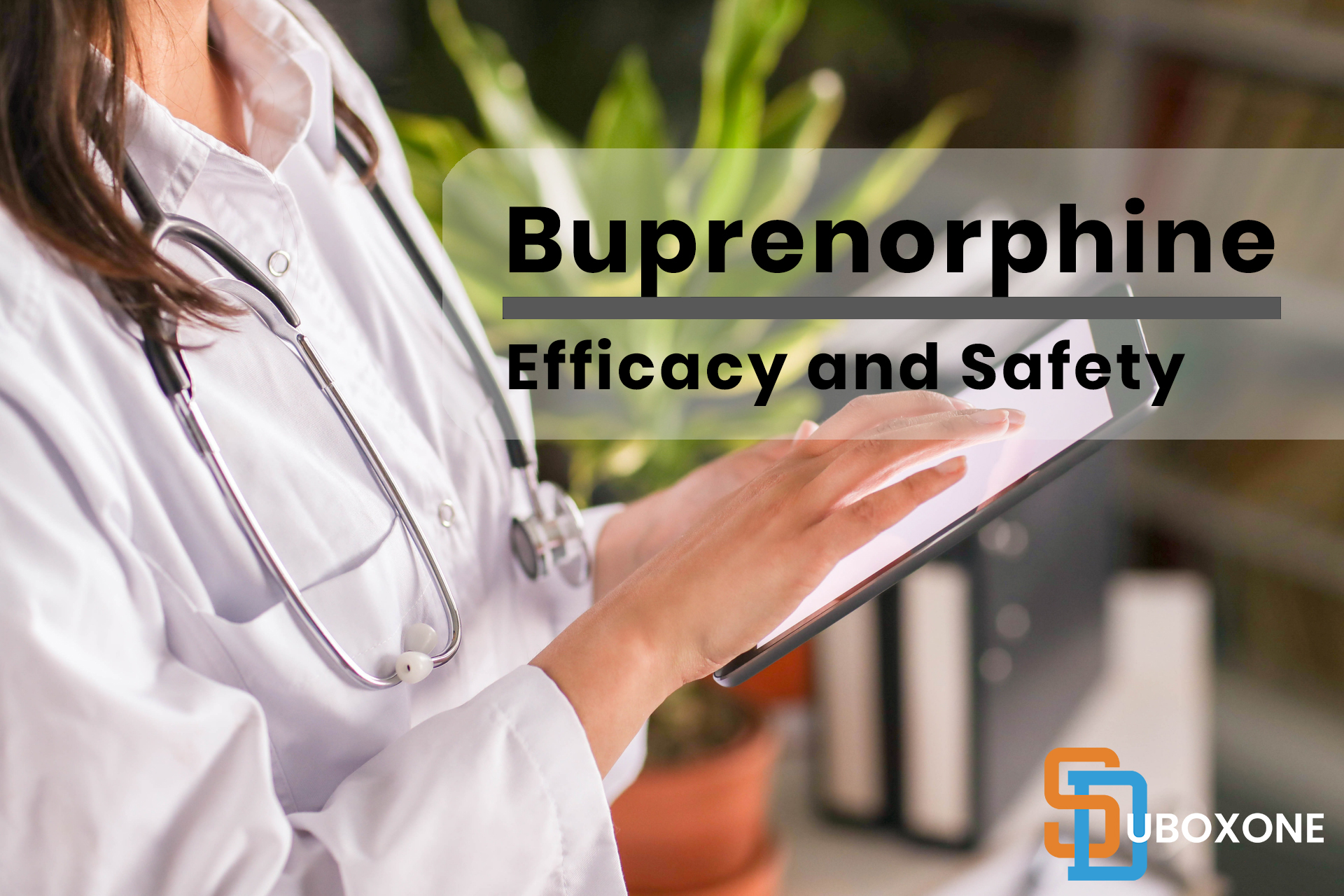 buprenorphine efficacy and safety